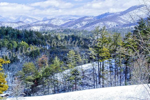 Snow Weaverville-20090302-0023