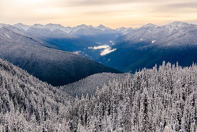 Winter layers in the Olympic Mountains