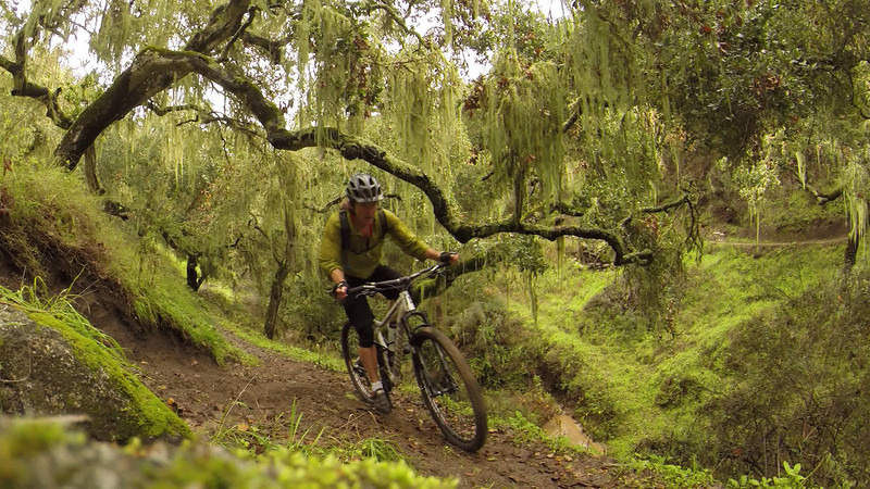 Mountain biking in the Temple of Toro