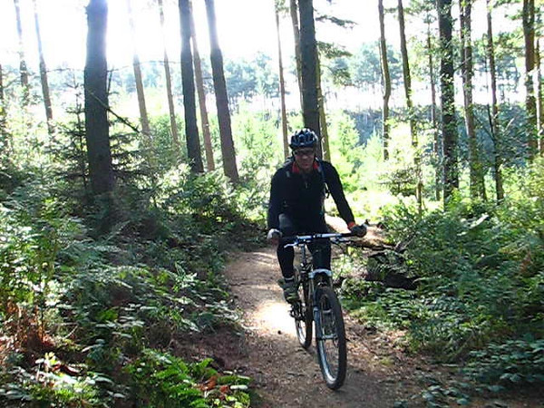 Ray .. Dalby Forest