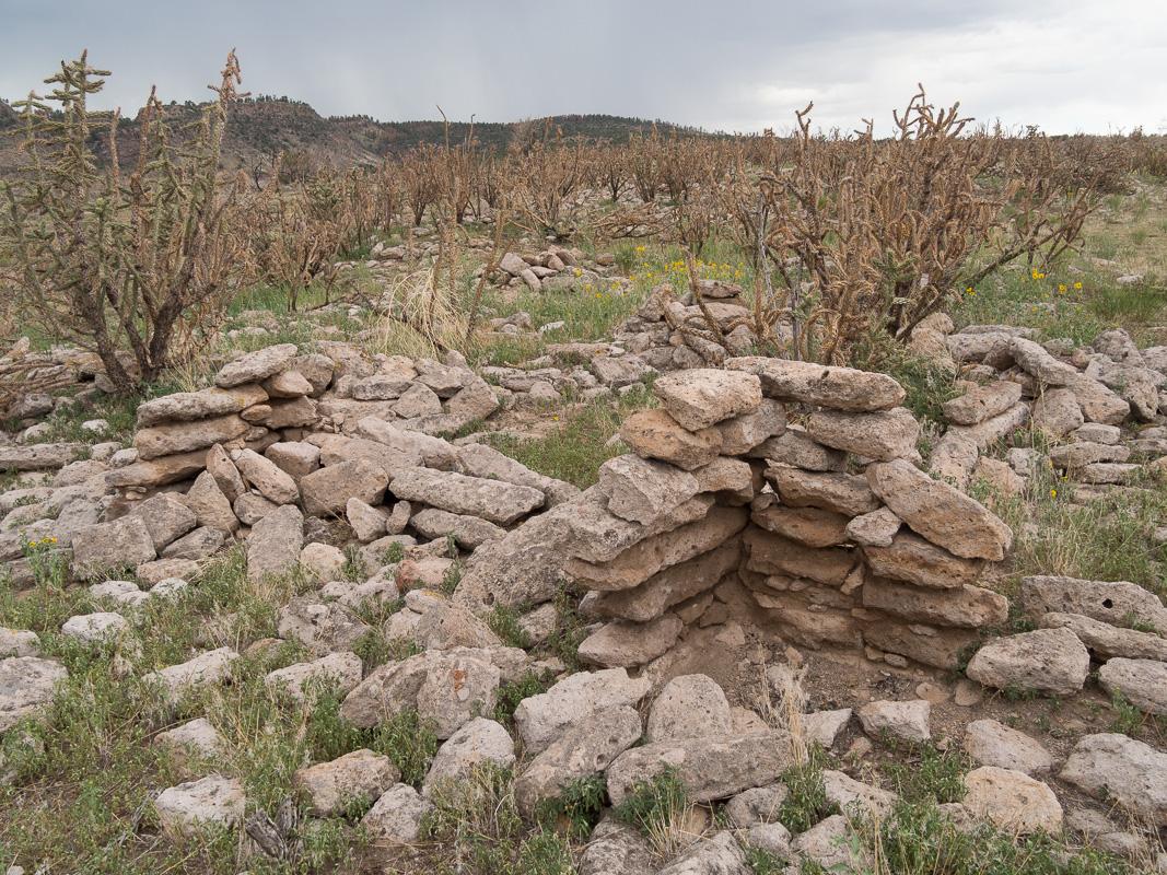 Ruins still unexcavated at the Yapashi Pueblo.