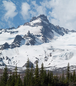 Little Tahoma from the Glacier Basin trail.