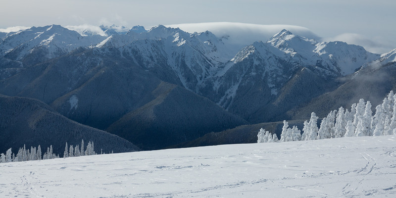 Mt. Olympus and the Blue Glacier are just visible behind the peaks of the High Divide.