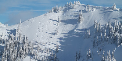 Powder tracks on northwest slopes of Hurricane Ridge.