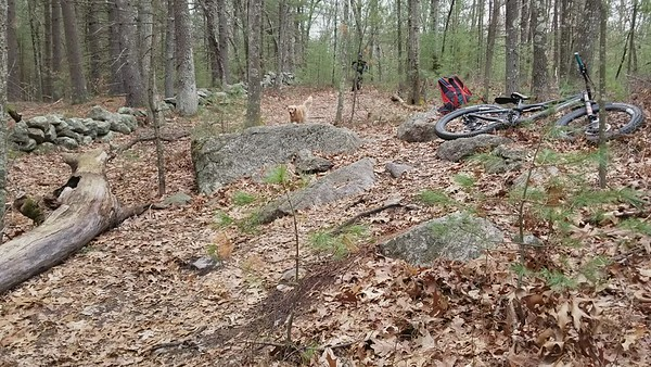 Fun trail vids