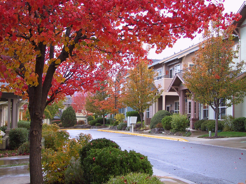Hillside Neighborhood at Mountain Meadows
