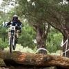 20110227_145039_NZSN8961