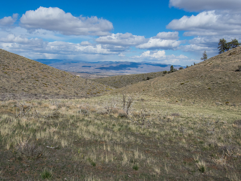 Taken on a ride at Peavine, looking east towards Reno.