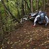 20101106_170537_NZSN3607