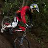20101106_174144_NZSN3664