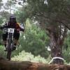 20110227_145600_NZSN8984