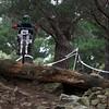 20110227_141848_NZSN8859