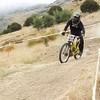 20110219_151048_NZSN6303