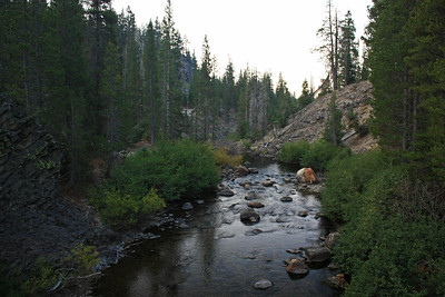 This is a view looking south from the bridge crossing the Middle Fork of the San Joaquin River.