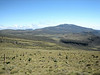 habitat of Lobelia deckenii ssp. keniensis (Mt.Kenya,E.Africa 2005)