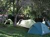 Campsite Forest Gate 1735m. (Mt.Kenia,E.Africa 2005)
