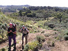 Park Gate Camp 2995m.-- Road End 3327m. (Mt.Kenya,E.Africa 2005)