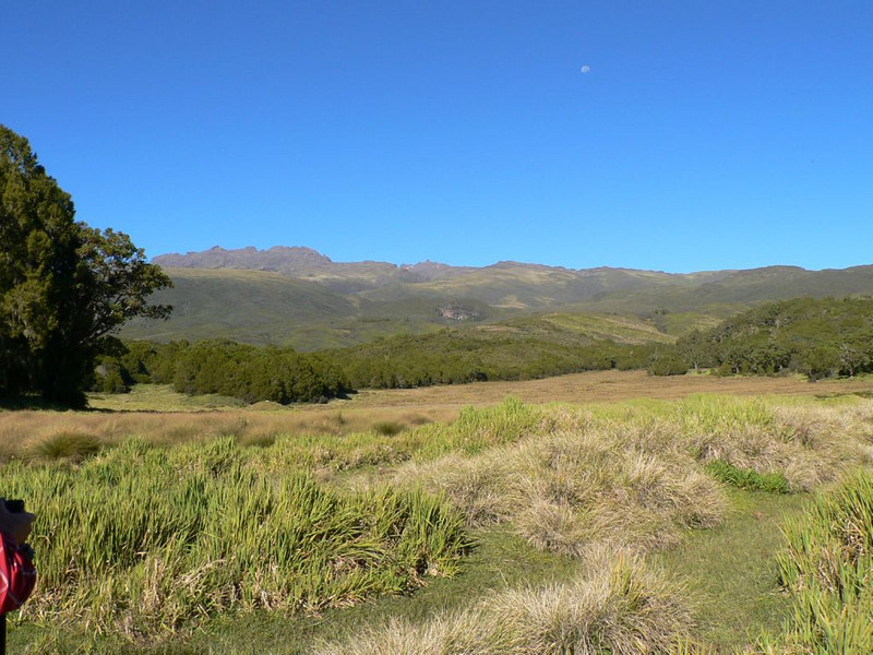 20 Dec. Park Gate Camp 2995m.-- Road End 3327m. (Mt.Kenya,E.Africa 2005)