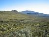 landscape near Road End (Mt.Kenya,E.Africa 2005)