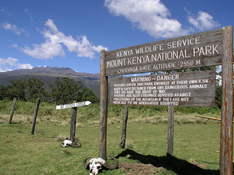 Park Gate Campground 2995m. (Mt.Kenya,E.Africa 2005)