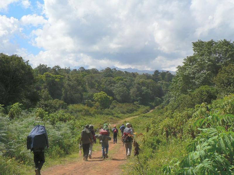 trekking (Mt.Kenya,E.Africa 2005)