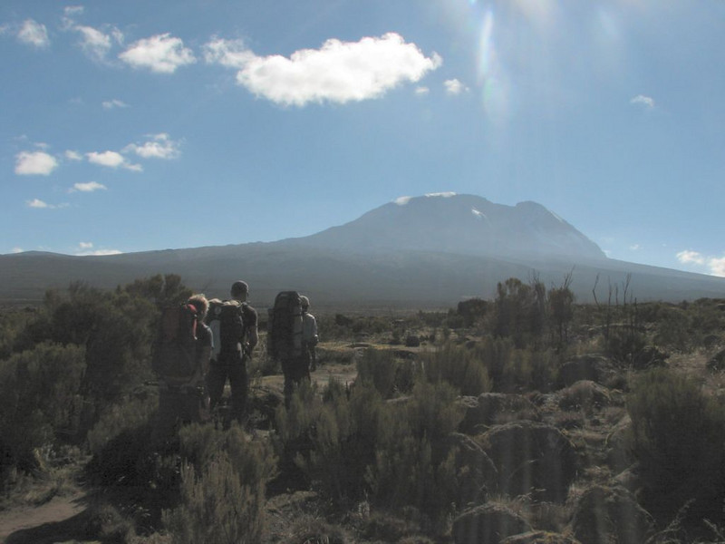Camp Shira 1 3505m. - Camp Shira 2 3891m. (Kilimanjaro, Tanzania 2005)