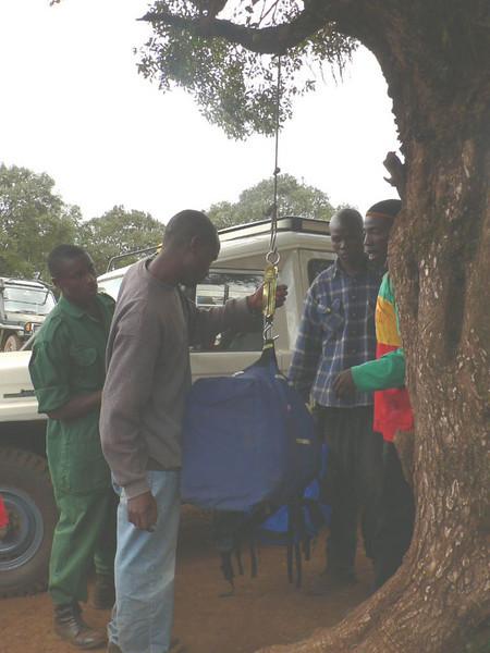 weighting luggage porter load (Kilimanjaro, Tanzania 2005)
