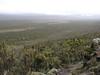 Shira Plateau 3500m. (Kilimanjaro, Tanzania 2005)