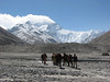 Base Camp - Camp1 Mount Everest (Tibet 2006 Lakpa Ri Expedition)