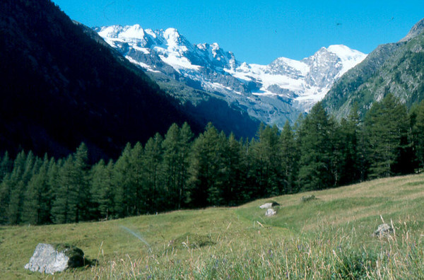 20-21-22-23 July, Camping Gran Paradiso 1666m. Valnontey Italy (Gran Paradiso, Italy 2002)