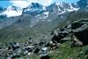 Vall del Lauson 2500m. route Valnontey - Ref. V. Sella 2584m. (Gran Paradiso, Italy 2002)