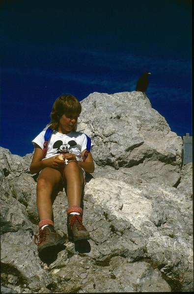 descent of the Hochstuhl (VRH Stol) 2236m. (Julian Alps, yougoslavia 1987)