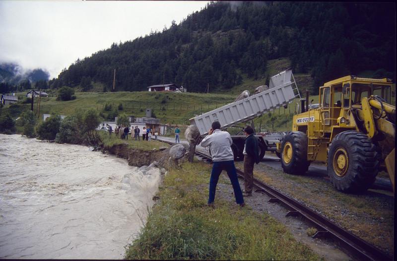 protection of the railway (Zernez, National Park Switzerland)
