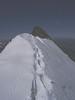 summit Stecknadelhorn 4241m.