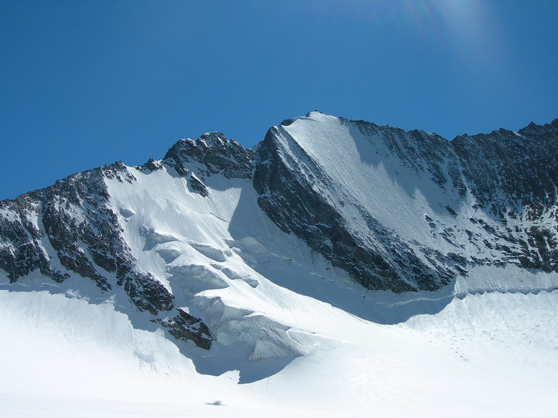 Hohbalmglacier with the Lenzspitze 4294m.