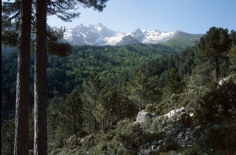 landscape with Punte muzella 2425m. (GR20  Corsica, France 2003)