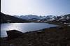 habitat of Crocus corsica (Lac de Nino 1743m.)
