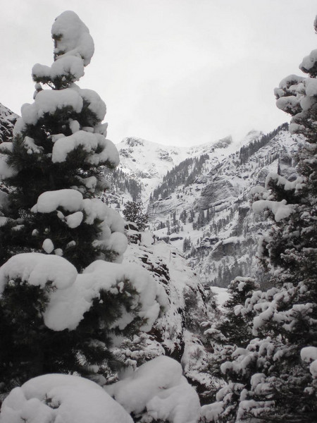 Ouray 2010-111