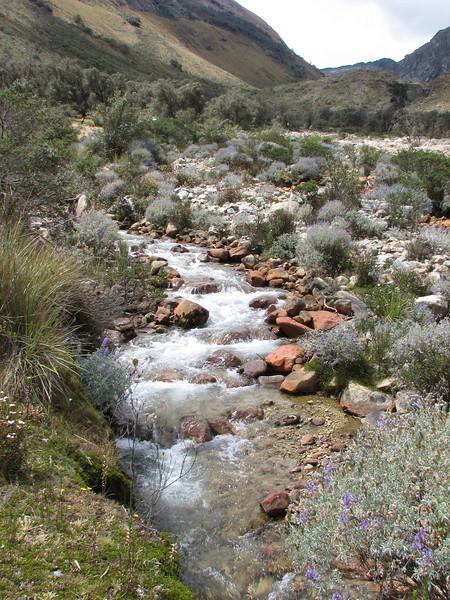 trekking-route, along the stream (Peru 2009, Llamacoral 3750m. - Taullipampa 4150m. Cordillera Blanca)