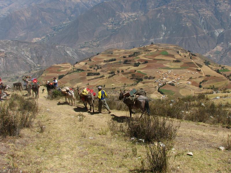 caravan with the luggage (Peru 2009, Lake Cullicocha 4628m. - Calamina 3950m. Cordillera Blanca)
