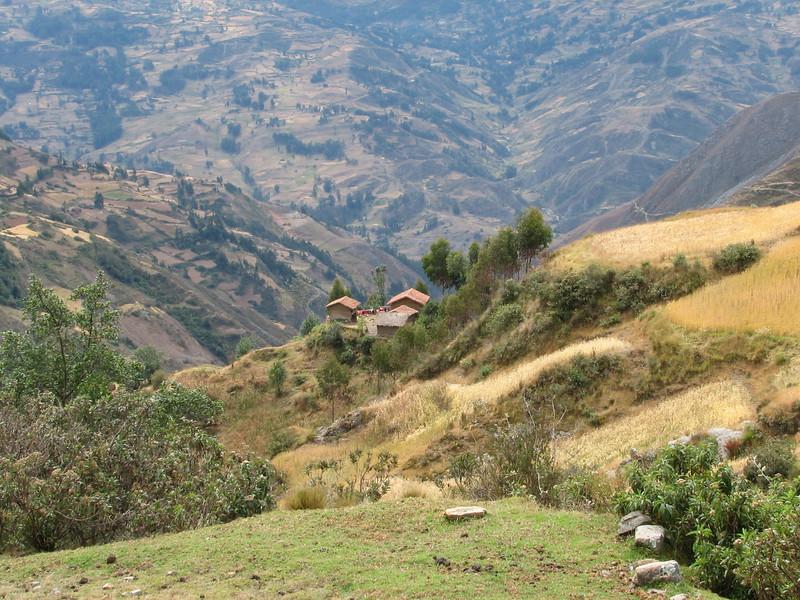 farming land (Peru 2009, Ingenio 4125m. - ruins of Yaino - Pomabamba 2950m. Cordillera Blanca)