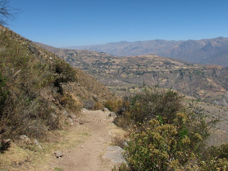 in the background the Cordillera Negra (Peru 2009, Lake Cullicocha 4628m. - Calamina 3950m. Cordillera Blanca)