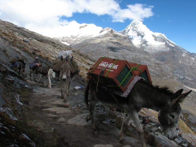 ascent of the Punto Union pass 4760m (Peru 2009,  Taullipampa 4250m. - Punto Union 4760m - Tuctupampa 4100m. Cordillera Blanca)
