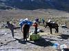 luggage handling (Peru 2009,  Taullipampa 4250m. Cordillera Blanca)