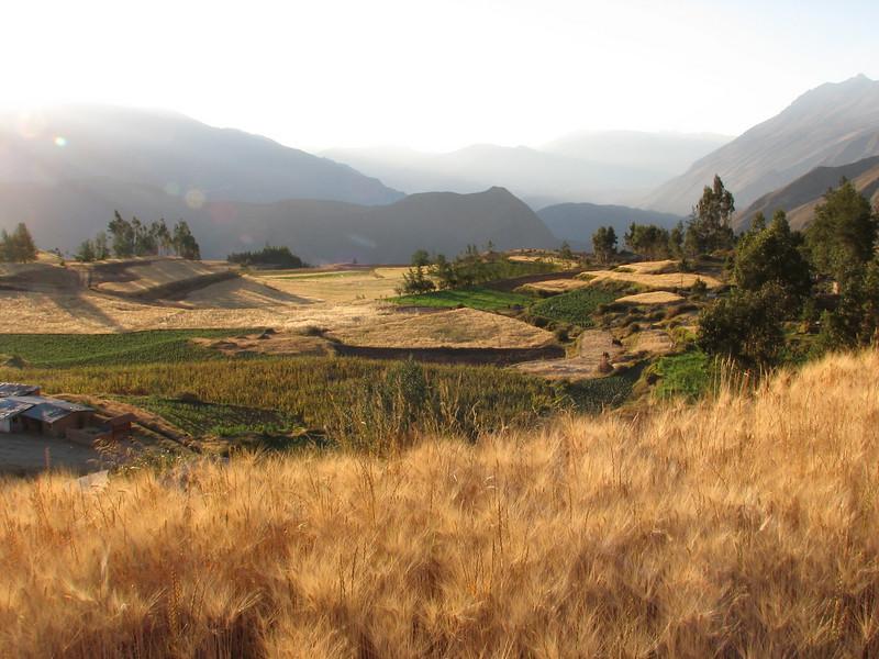 farmerland near the new campground (Peru 2009, Lake Cullicocha 4628m. - Calamina 3950m. Cordillera Blanca)