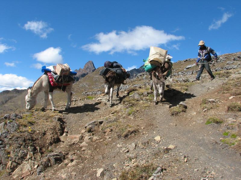 Collota 4360m.pass (Peru 2009, Yuraj Machay 4000m. - Collota 4360m.pass - Safunna 4150m. Cordillera Blanca)