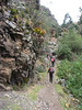 trekking route along rocks with Bromelias (Peru 2009, Pomabamba 2950m. - pass - village Yanacollpa - Yuraj Machay 4000m. Cordillera Blanca)