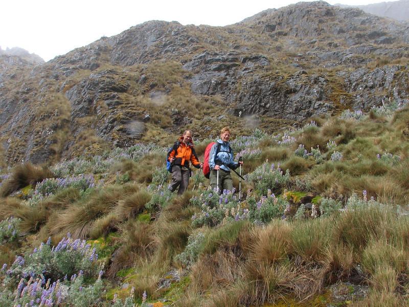 descent, Hannie and Michel  (Peru 2009 Tuctupampa 4100m.- Alto de Pucaraju 4650m - Ingenio 4125m. Cordillera Blanca)