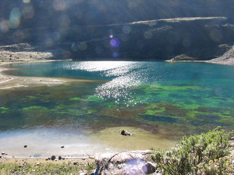 the colourfull Safuna lakes (Peru 2009, Safuna 4150m. - Lakes Safuna - Mesapata pass 4460m - underneath Gara Gara pass 4550m. Cordillera Blanca)