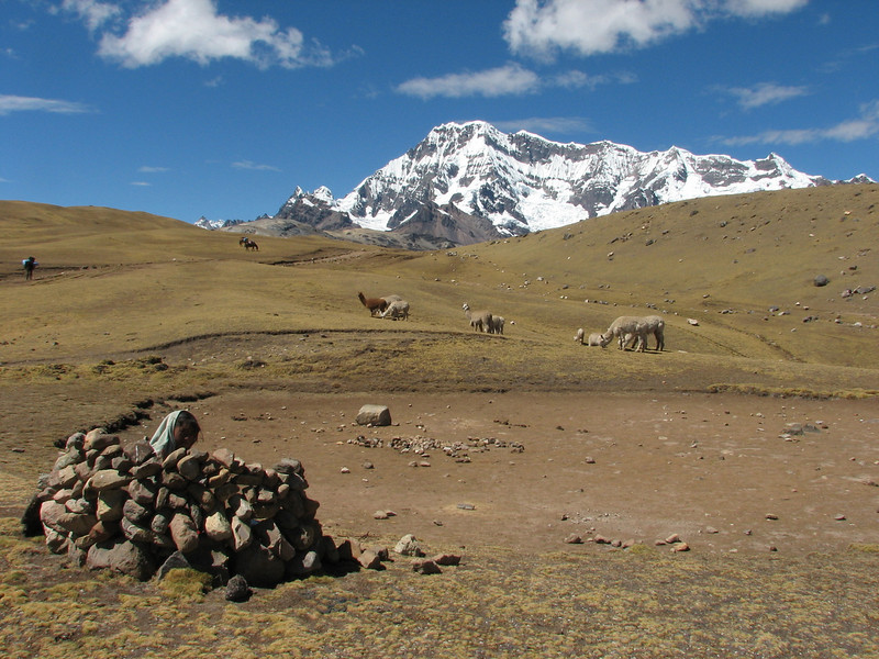 protected place for the herdsmen of the alpacas (Peru 2009, Tinqui 3900m - Upispampa 4450m. Auzangate)
